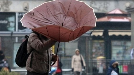 Firenze, allerta meteo per vento forte