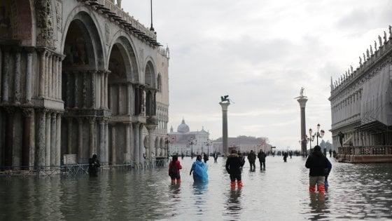 """""""Un baccalà per Venezia"""", l'antipasto solidale dello chef fiorentino"""