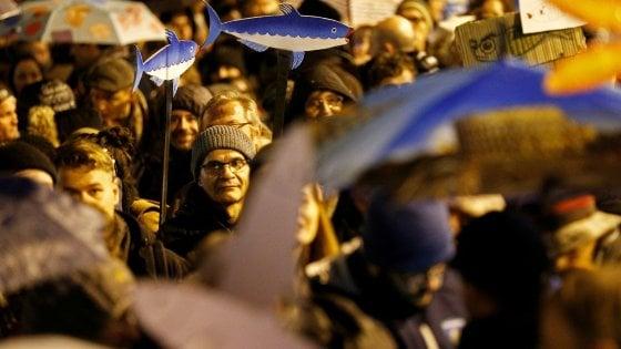 Le sardine arrivano a Firenze, pronte a invadere piazza della Repubblica