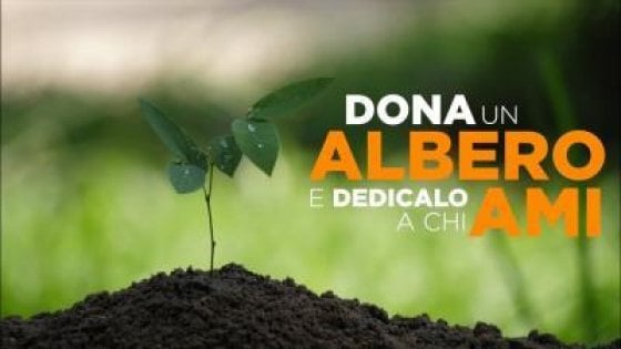Expats & Tourists Invited to 'Plant a Tree' in Florence