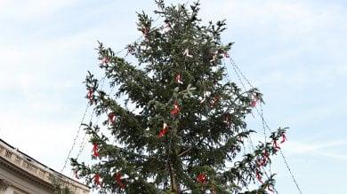 Un albero di Natale addobbato con scarpe  rosse contro la violenza sulle donne -  foto