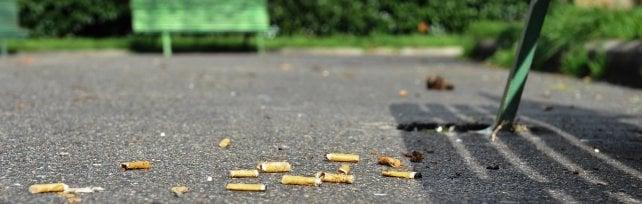 Fiori e piante dai mozziconi di sigaretta buttati via:l'esperimento di Capannori