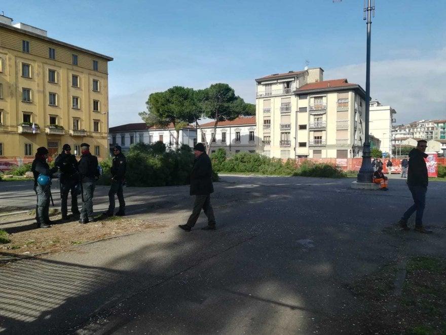 Firenze, blitz in piazza della Vittoria: abbattuti i pini