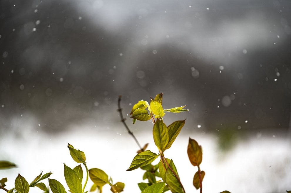 Toscana, la prima neve di primavera: viaggio per immagini