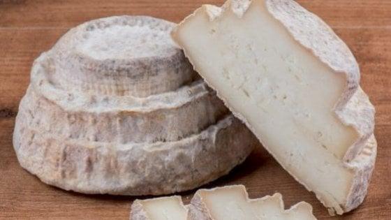 Toscana, l'elenco dei caseifici per ordinare i formaggi e riceverli a domicilio