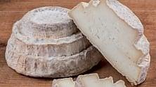 L'elenco dei caseifici per ordinare i formaggi e riceverli a domicilio