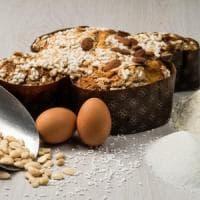 Firenze coronavirus: uova e colombe come averle a casa
