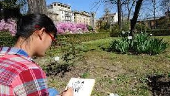 Musei dell'Università di Firenze, riapre il Giardino dei Semplici