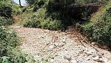 Aiutatemi a far pulire il bosco di Vaglia dai rifiuti