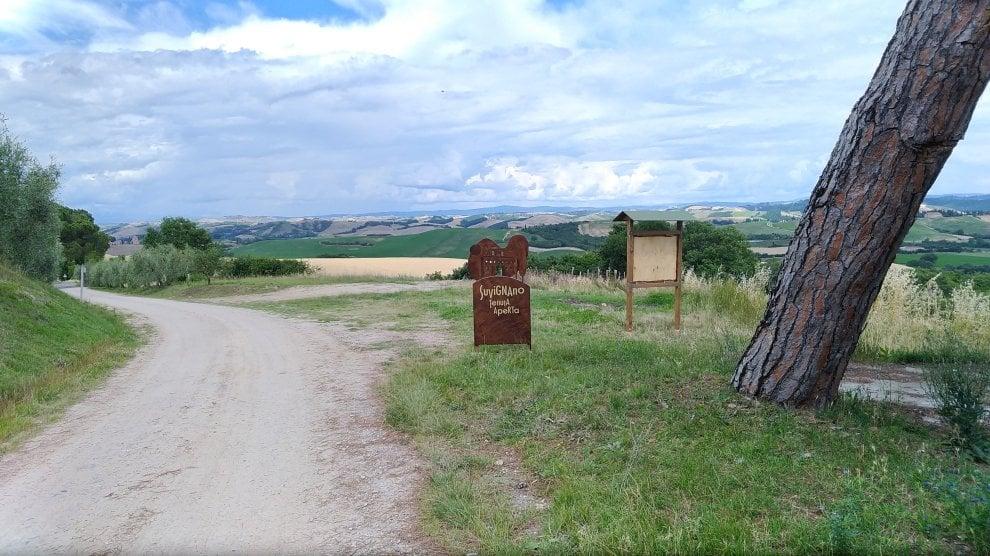 Siena, Suvignano apre le porte al pubblico