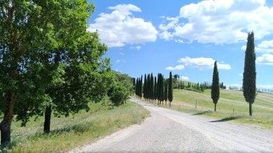 Siena, Suvignano apre le porte al pubblico      /video     /    foto