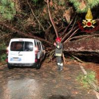 Maltempo in Toscana, alberi caduti, strade bloccate, evacuato un palazzo colpito da un fulmine
