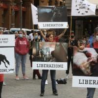 Firenze, la manifestazione degli antispecisti in piazza della Repubblica