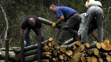 Caccia al lavoro perduto Il futuro è dei boscaioli