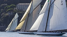 Le 'signore del mare' nel golfo di Portofino