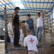 La solidarietà di Music for peace raggiunge Gaza