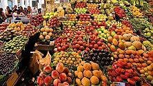 """Diventare """"sommelier"""" della frutta, un master  ad Albenga"""