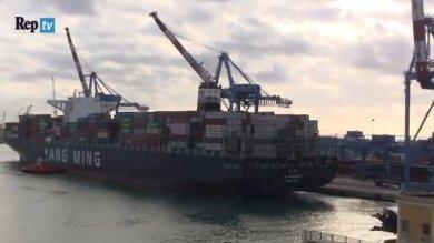 Genova, ecco la super portacontainer  da 14 mila tonnellate  Video