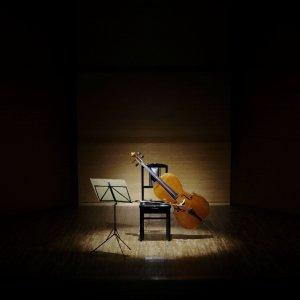 """Genova, """"l'invasione"""" dei 101 violoncellisti"""