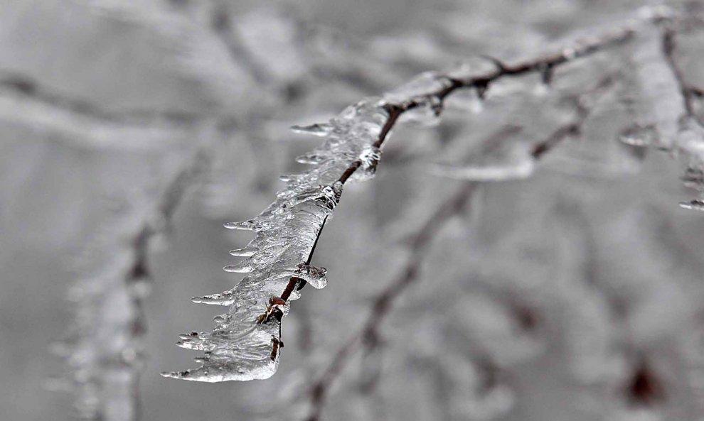 Inverno sui monti liguri, i ricami della galaverna