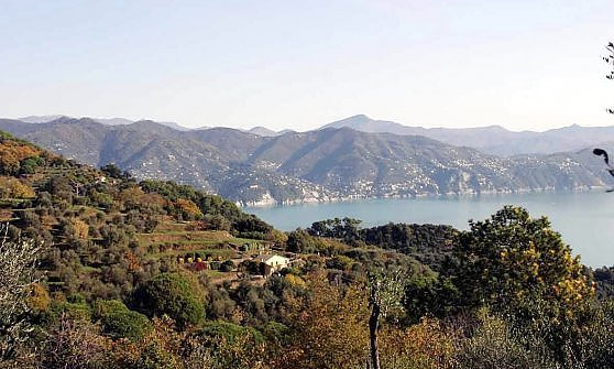 """""""L'Ombra del mattone sul Parco di Portofino"""""""