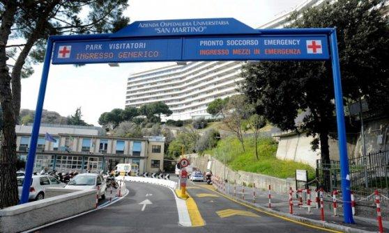 Genova, caccia al cinghiale nei viali dell'ospedale San Martino