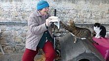 Sanremo, scambi  di coccole tra gli anziani  e i mici del gattile