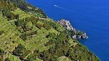 Liguria, l'estate boom,  da Genova alle riviere la vacanza dell'anno