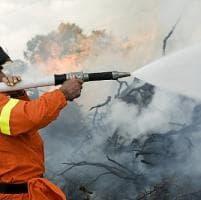 Incendi: da oggi stato di grave pericolosità