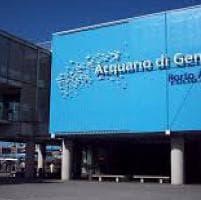Società, cultura, spettacoli. Gli appuntamenti a Genova e in Liguria mercoledì