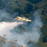 Incendi a Genova, domato il fronte sopra Bogliasco