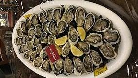 IndarSena, sul mare di Genova ostriche alla francese  Video