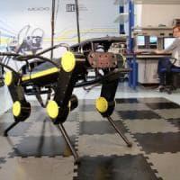 IIt, ecco  il robot animaloide per i disastri ambientali.