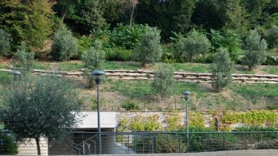 Genova, i Giardini Chighizola aperti e subito chiusi. All'insaputa di Tursi