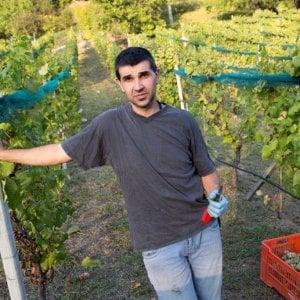 Valpolcevera, Il doc oltre la siepe: il quasi farmacista e la sua Bianchetta cresciuta a Morego