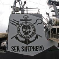 "Porto Antico, Sea Shepherd, la nave ambientalista pronta a ""mordere"""