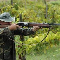 Il Tar Liguria stoppa la caccia allo storno, ma la Regione torna alla carica
