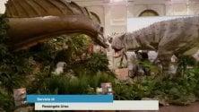 Alla scoperta  dei dinosauri, viaggio indietro nel tempo      Foto