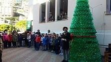 Sori, milleduecento bottiglie fanno un albero (ecologico)