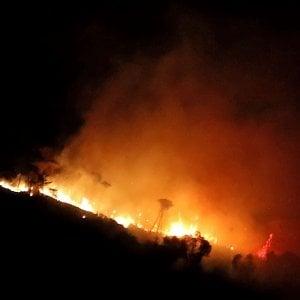 Genova, incendio sopra Nervi: minacciate le case, partono gli sgomberi