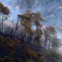 Incendi in Liguria, è ancora emergenza