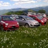 Genova, il prato dei narcisi diventa un parcheggio: pioggia di multe