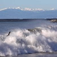 Savona, quattro turisti travolti da mareggiata, un morto