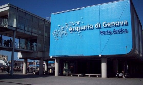 Società, cultura, spettacoli: gli appuntamenti a Genova e in Liguria lunedì 17 luglio