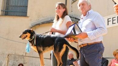 San Rocco di Camogli, premio fedeltà a Bairo, Gino e Gina    Fotogallery