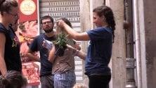 Guerrilla gardening, piante e fiori sui beni confiscati