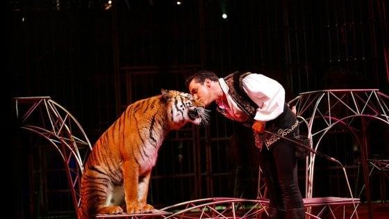 A Nizza il circo più grande di Francia