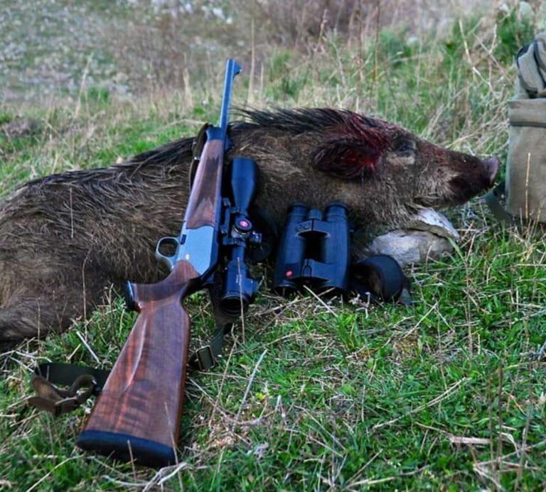 Scambia  cacciatore per un cinghiale e lo colpisce a morte
