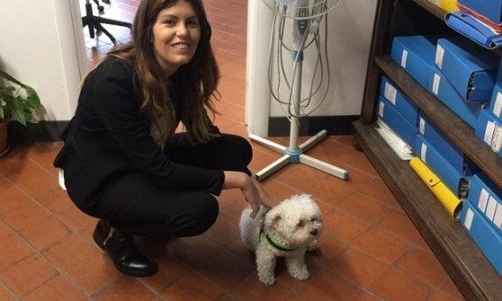 L'assessora di Genova: sì ai cani dei dipendenti in ufficio