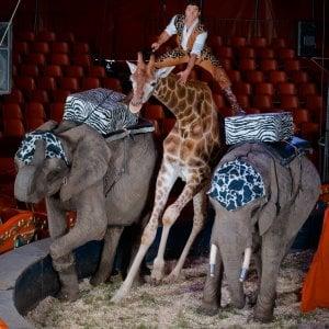 Montecarlo capitale mondiale del circo